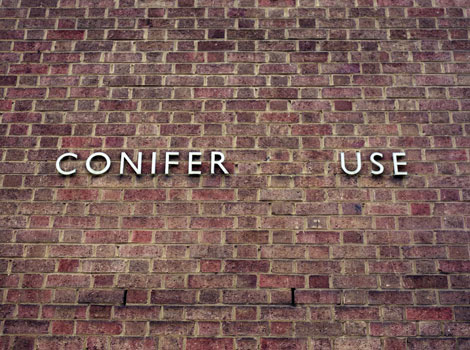 CONIFER_USE