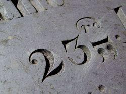 DSCF7262