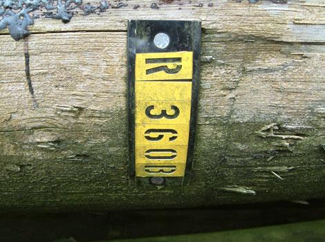 Dscf0457